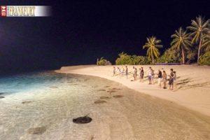 Stingray Fütterung auf Sun Island