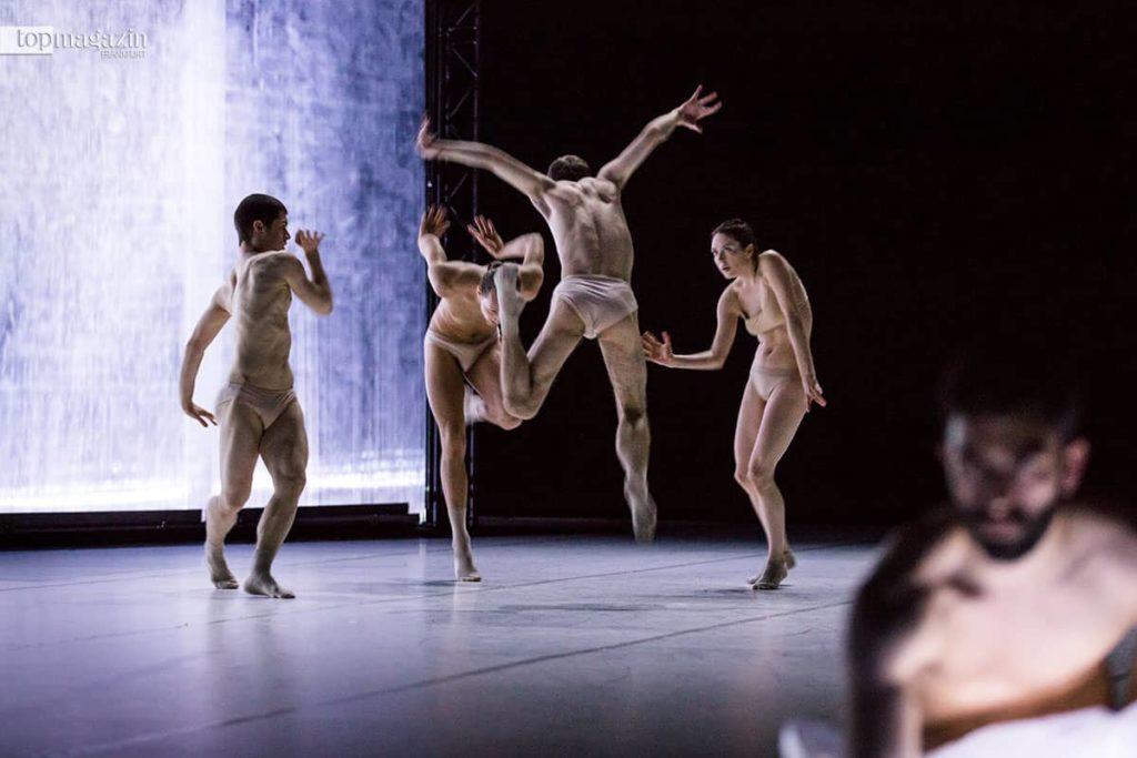 Szene aus dem Stück 'Extinction of a minor sepcies' der Dresden Frankfurt Dance Company