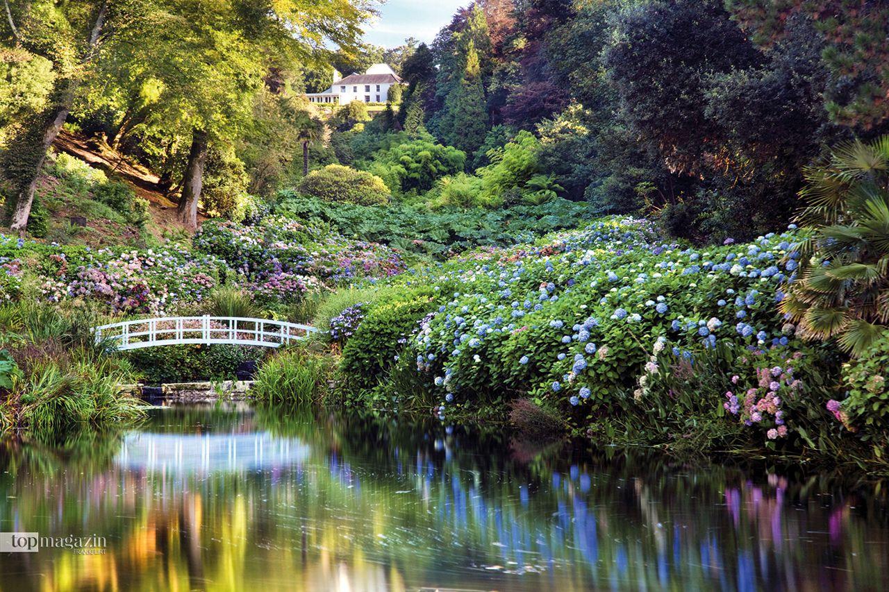 Trebah Garden in Cornwall: Auch bekannt als das Haus an der Bucht in einem subtropischen Gartenparadies am Helford River ist der kornische Schluchtgarten ein Wald aus Rhododendren, Magnolien, Kamellien und weiteren exotischen Blumen und bietet so ganzjährig ein zauberhaftes Farbspektakel.